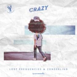 Lost Frequencies - Crazy